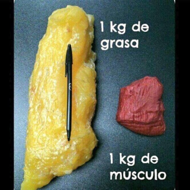Diferencia entre volumen de grasa y volumen de músculo en 1 kilo de peso